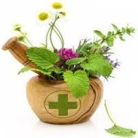 Fitoterapie - sanatate din plante