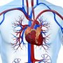 Sfatul farmcistului Migrene vasculare zilnice 65 de ani