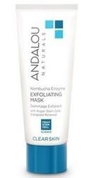 Kombucha Enzyme Exfoliating Mask - Andalou Naturals