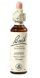 Aspen - Bach