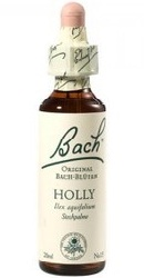 Holly - Bach