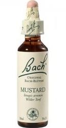 Mustard - Bach