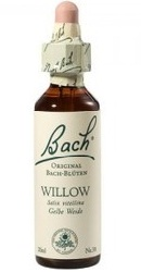 Willow - Bach