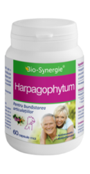 Harpagophytum - Bio Synergie
