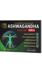 Ashwagandha - Cosmopharm