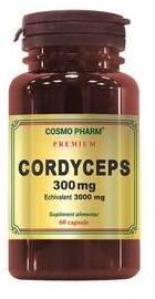 Cordyceps 300 mg -  Cosmopharm