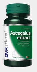 Astragalus Extract - DVR Pharm
