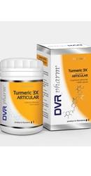Turmeric 3X Articular - DVR Pharm