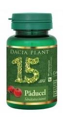 Paducel - Dacia Plant