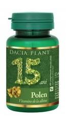 Polen - Dacia Plant