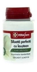 VF Silueta Perfecta plus Leustean - Dacia Plant