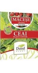 Ceai de Macese Fructe - Dorel Plant