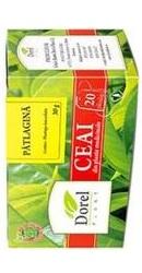 Ceai de Patlagina - Dorel Plant