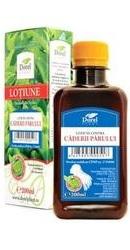 Lotiune Contra Caderii Parului - Dorel Plant