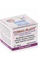 Comag Plant Crema - Elzinplant