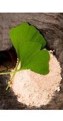 Ginkgo Biloba Pudra Organica - Evertrust