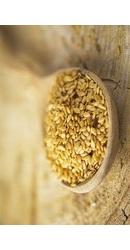 Seminte de In Auriu Organice Crude - Evertrust
