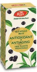 Antioxidant si antiaging – Fares