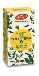 Colesterol 1 - Fares