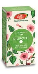 Diurofit 1 - Fares