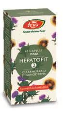 Hepatofit 2 - Fares