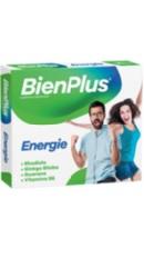 BienPlus Energie - Fiterman