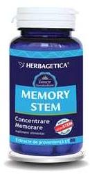 Memory Stem - Herbagetica