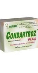 Condartroz Plus - Hofigal