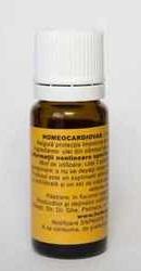 Homeocardiovas - Homeogenezis