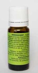 Homeocert - Homeogenezis