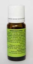 Homeonicopas - Homeogenezis