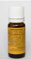 Homeosistemic - Homeogenezis