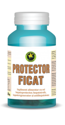 Protector Ficat - Hypericum