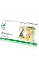 Boswellia - Medica