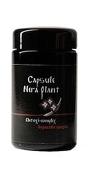 Detoxi Complex - Nera Plant