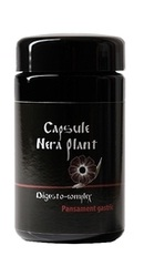 Digesto Complex - Nera Plant