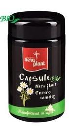 Entero Complex - Nera Plant