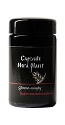 Glicemo Complex - Nera Plant