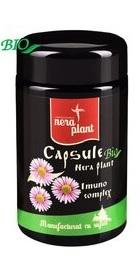 Imuno Complex - Nera Plant