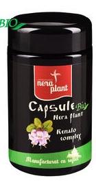 Renalo Complex – Nera Plant