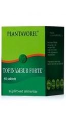 Topinambur Forte - Plantavorel