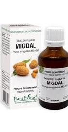 Extract din muguri de MIGDAL - PlantExtrakt