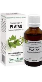 Extract din muguri de PLATAN – PlantExtrakt