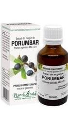 Extract din muguri de PORUMBAR - PlantExtrakt