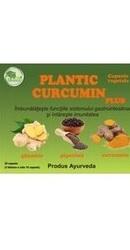 Curcumin Plus – Plantic