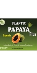 Papaya Plus – Plantic