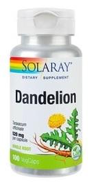 Dandelion - Papadie