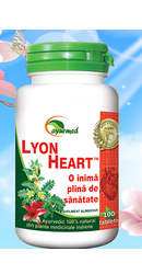 Lyon Heart - Star International