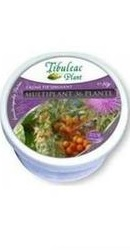 Crema multiplant cu 36 plante - Tibuleac