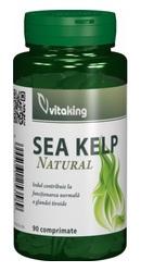 Alga marina - Vitaking